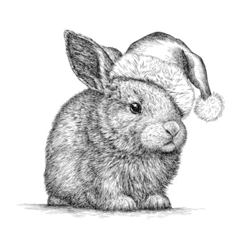 Rabbit, black and white engrave. Christmas hat.
